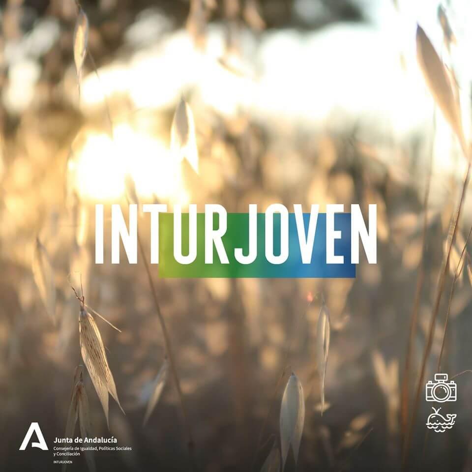 Imagen de la noticia: Campamentos de verano Inturjoven 2021 [Actualizado]